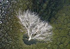 Aerial landscape photography offers a fresh perspective of our world. While some photographers choose to rent a helicopter or an airplane to capture these