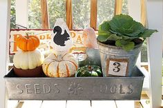 Fall decorating out on the porch - thrifted galvanized carrier filled with fun fall decorating ideas