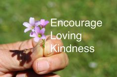 Encourage Loving Kindness (ELK) by YES Psychology & Consulting. photo taken by Kash Thomson. www.yespsychology.com.au
