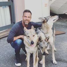 TW hunter meets the real wolves of Rome! Chris Argent, Alpha Werewolf, Gareth David Lloyd, Wolf World, Imaginary Boyfriend, John Barrowman, Teen Wolf Cast, Hot Guys, Hot Men