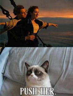 Grumpy Cat watches Titanic