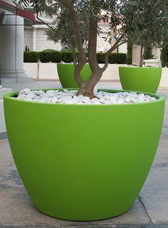 Pots & Planters Details