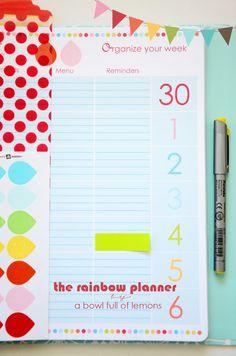 Rainbow Planner -  A Bowl Full of Lemons 3
