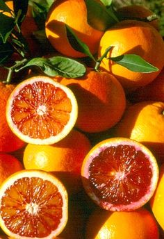 Arance rosse di Sicilia / luv the blood orange juice in Italy, the best