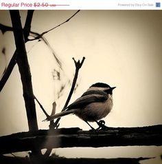 I love chickadees