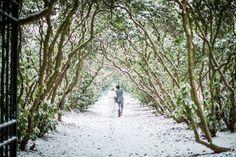 Winter wedding in Eindhoven, Huize Rustoord door Dario Endara Wedding Photography