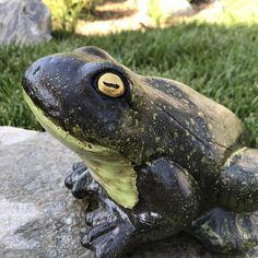 Arboretum Art Concrete Frog Hand Painted Garden Yard Art Toad Statue, Ready to Ship, Item Concrete Patios, Concrete Garden Statues, The Journey, Painting Cement, Painted Rocks, Hand Painted, Frog Statues, Garden Frogs, Toad