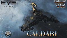 """EVE Online - Personal Log: SHIP """"SKINs"""" SYSTEM - CALDARI"""