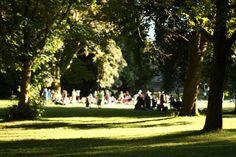 http://www.seattleschild.com/10-best-parks-kids-seattle/