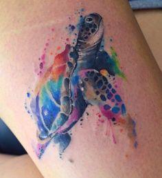 Javi turtle