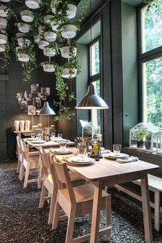 Produkter: NORRÅKER bord, NORRÅKER stol, NORRÅKER benk, NORRÅKER skjenk, FOTO lampe, BITTERGURKA ampel, BITTERGURKA vannkanne, SOCKER drivhus, IKEA 365+ servise, IKEA 365+ vinglass. Foto: Tor Lie