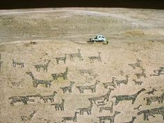 Nitrate Towns Pintados Geoglyphs in Chile