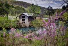 Grist mill dogpatch