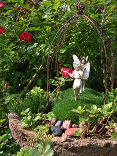 Pictures of Fairy Gardens | Build a (Real?) Fairy Garden | Indiana Gardening Web Articles