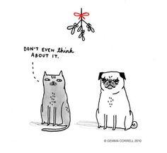 cat, comic, cute, illustration, kiss // jajajjaja hilariouss