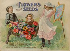 1897 Flowers from Seeds catalogue cover