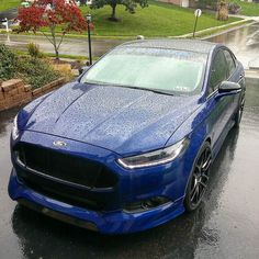 Quick cell pic of Blue all wet! Them water beads tho!  . . by g.pitty