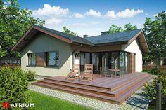 Projekty domów - Projekt domu parterowego AMBER - wizualizacja 1
