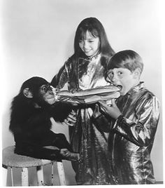 Angela Cartwright and Bill mumy ~ Lost in Space Lost In Space Cast, Space Tv Shows, Science Fiction Series, Sci Fi Shows, Sci Fi Tv, Old Shows, First Tv, Old Tv, Scary Movies