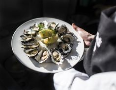 May The famous Narooma Oyster festival offers fireworks, live music, cooking demos, celebrity chefs, shucking & our region's delicious oysters! Oyster Festival, Australian Holidays, Best Oysters, Oyster Recipes, Gourmet Recipes, Seafood, Cooking, Ethnic Recipes, 2nd October