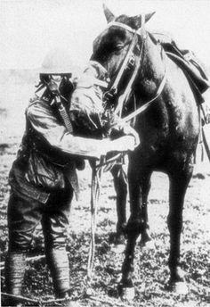 The Horses of World War I