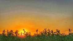 17  Oct. 6:36 福岡市近郊の日の出です。 #sunset at suburban areas in Fukuoka city, Japan
