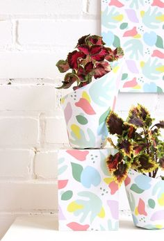 Wrap up your plants via Designlovefest