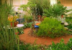 Gardendeva is an organization that offers you the best of their modern garden designs to the customers who wants to embrace their garden with trending garden designs . Crazy Paving, Modern Garden Design, Plant Nursery, Blue Pearl, Gardens, Fire, Organization, Landscape, Plants
