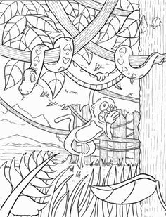 Rainforest coloring page from Forests category. Select from 20946 printable crafts of cartoons, nature, animals, Bible and many more.