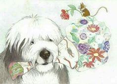 Happy Birthday Dog Meme, Old English Sheepdog Puppy, English Shepherd, Bearded Collie, Fluffy Dogs, Lovely Creatures, Sheep Dogs, Doggies, Cartoon Dog