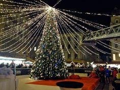 クリスマス・ツリー Opera House, Building, Travel, Viajes, Buildings, Destinations, Traveling, Trips, Construction