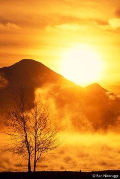 Steamy Sunrise, Resurrection Bay, Seward, Alaska; photo by Ron Niebrugge