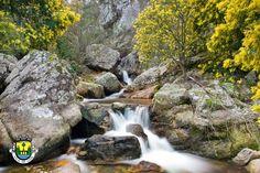 Olhai os lírios do campo: Coisas bonitas da Vila de Góis - Portugal