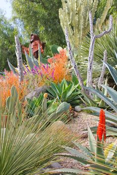 Laguna Dirt: Tour an Old World Mexican Garden Paradise
