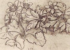 History of Art: Renaissance - Leonardo da Vinci