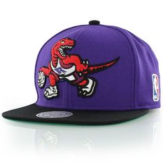 mitchell and ness TORRONTO RAPTORS XL LOGO 2 TONE purple