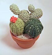Ravelry: Knitted Cactus Garden pattern by Diane Lau - WORSTED -- $