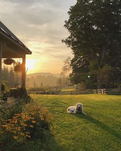 meg's oldfarmhouse — Homestead at🌄 sundown Pinterest •...