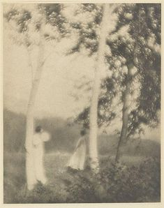 """littlepennydreadful: George H. Seeley, The. - littlepennydreadful: """" George H. Seeley, The White Trees, 1910 Photogravure """" Artistic Photography, Aerial Photography, Vintage Photography, Art Photography, Vivian Maier, Alfred Stieglitz, Art Database, Old Photos, Les Oeuvres"""