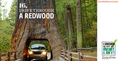 Drive Through a Redwood | Repin if this is on your bucket list too! #bucketlist