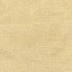 Vanilla Sketch - Timeless Treasures Cotton - 1/2 yard