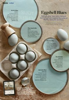 Paint Inspiration Eggshell Blues Love The Eggshell Tiffany