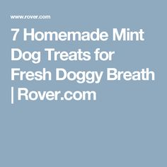 7 Homemade Mint Dog Treats for Fresh Doggy Breath | Rover.com
