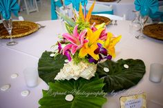 shell flower wedding center pieces | ... shell. - Coconut Cove Studios and Expert Photography and Flowers By