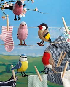 alan dart's collection of song birds