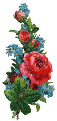 Flowers463