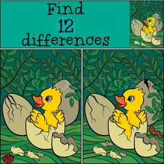 Stock vector of 'Children games: Find differences. Little cute duckling hatched from the egg. It`s smiling and happy. Find The Difference Pictures, Spot The Difference Kids, Brain Teasers Riddles, Brain Teaser Puzzles, Educational Activities, Preschool Activities, Find The Differences Games, Homemade Cold Remedies, Funny Puzzles
