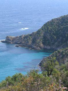 Dive in the Mediterranean Sea