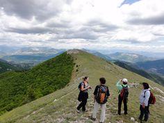 Activités - Les Planious Provence, Travel, Mountains, Viajes, Trips, Traveling, Tourism, Provence France, Vacations