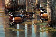 Southern Elegancewood ducks16 x 24 artist  Cynthie Fisher
